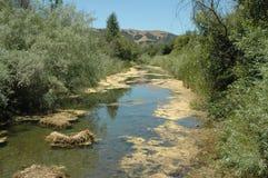 Brackish stream. At Casa de Fruta, Gilroy, California stock photos