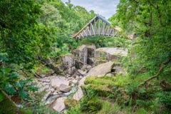 Bracklinn在Callander,小镇附近在斯特灵,苏格兰理事会地区下跌,风景自然风景  免版税库存图片
