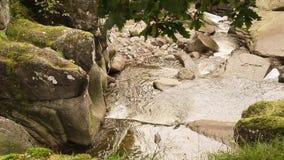Bracklinn falls near Callander, Scotland, HD footage stock video footage