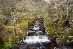 Bracklinn nedgångar, Skottland, UK Arkivbild