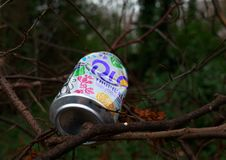 Discarded Soda or Soft Drinks Can in the Forest royalty free stock images
