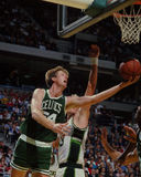 Brad Lohaus, Celtics de Boston Imagenes de archivo