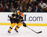 Brad Marchand Boston Bruins Fotos de Stock