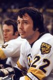 Brad Park, Boston Bruins Royalty Free Stock Images
