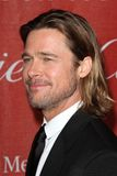 Brad Pitt Royaltyfri Fotografi