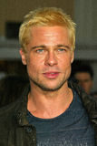 Brad Pitt Zdjęcia Royalty Free