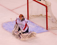 Braden Holtby Washington Capitals Royalty Free Stock Photography