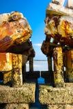 Bradenton海滩佛罗里达 库存照片