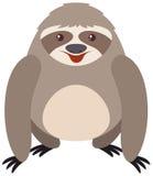 Bradipo grigio con il fronte felice illustrazione vettoriale