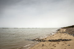 Bradwell-auf-Seeküstenlinie Stockbild