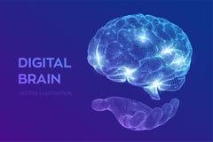 bragg Мозг цифров в руке концепция науки и техники 3D Нервная система Испытание IQ, искусственный интеллект виртуальный иллюстрация вектора