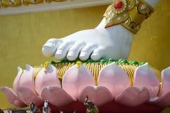 brahma脚大白色雕象在莲花的在泰国的公开寺庙 库存图片