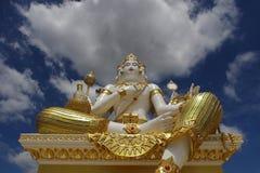 Brahma Stock Photos