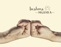 Brahma mudra. Yogic hand gesture. on toned background stock photography