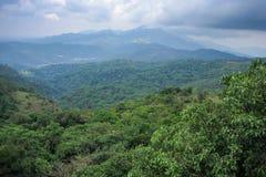 Brahmagiri-Gebirgszug, Talacauvery Lizenzfreie Stockfotos