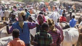 Brahmanu byk, Zebu i inny bydło przy jeden wielki bydlę rynek w rogu Afryka kraje, Babile Etiopia Zdjęcie Stock