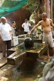Brahmin priest offers puja Stock Photos