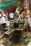 Brahmin priest offers puja Royalty Free Stock Photo