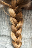 Braid. One braid of blonde hair Stock Photography