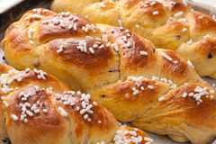 Braid Brioches. With sugar and chocolate chips Royalty Free Stock Images