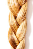 Braid Hairstyle. Blond Long Hair close up. Stock Image