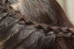 Braid Hairstyle,grey Brown long hair. Close up Royalty Free Stock Image