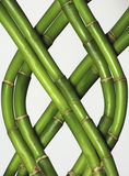 Braided Bamboo Royalty Free Stock Photography