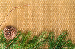 Braided Christmas background with fir branches and bumps Stock Image