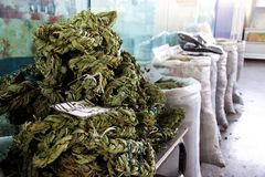 Braided dried sorrel leaves for sale in market, Yerevan, Armenia. At a market in Yerevan, Armenia, various large bags of goods for sale are in the background Stock Photo