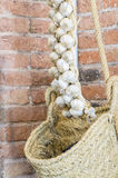 Braided Garlic Royalty Free Stock Images
