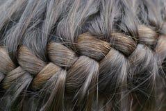 Braided hair Royalty Free Stock Photos