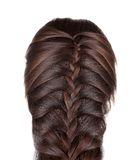 Braided Hair of a Young Woman. Stock Photos