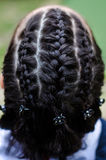 Braided locks. Young girl with braided locks- detail stock photo
