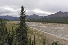 Braided River in the Alaskan Wilds Royalty Free Stock Photo