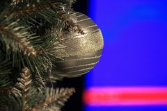 A braided shiny silver ball hangs on a white spruce. Decorations for the Christmas tree. Iridescent light in the reflection of the royalty free stock image
