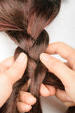 Braiding hair. On the wooden board Stock Image