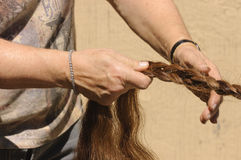 Braiding a horses tail Royalty Free Stock Image