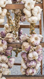 Braids of garlic. For sale at the local market Stock Photography