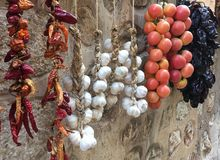 Braids of veggies. Colourful braids of dry and soft veggies hanging on the wall Stock Image