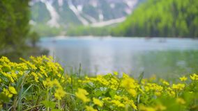 braies di lago акции видеоматериалы
