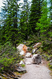 Braies jezioro Obraz Royalty Free