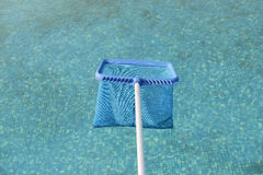 Brailer in pool surface Royalty Free Stock Photo