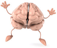 Brain. Fun brain, 3d generated picture Stock Photography