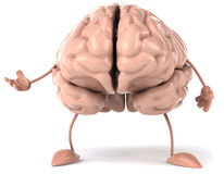 Brain. Fun brain, 3d generated picture Royalty Free Stock Photography