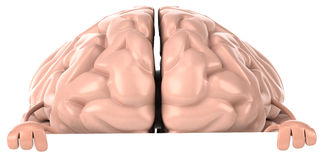 Brain. Fun brain, 3d generated picture Royalty Free Stock Photos