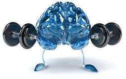 Brain. Fun brain, 3d generated picture Stock Photo