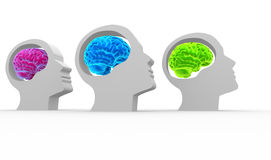 Brain. Human head with brain - teamwork. 3d render illustration stock illustration