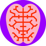 Brain. A stylized brain icon with highlighted pathways Stock Photography