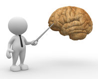Brain. 3d people - man, person pointing a brain Royalty Free Stock Images