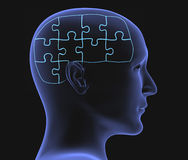 Brain. In the form of the combined puzzle Royalty Free Stock Photos